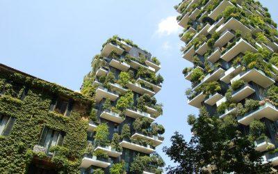 Megatrend ökologisches Investieren